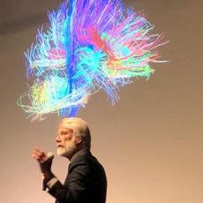 Wat doet bewegen met je brein
